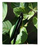 Folded Up - Green And Black Butterfly Fleece Blanket