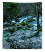 Fontaine De Vaucluse IIII Fleece Blanket