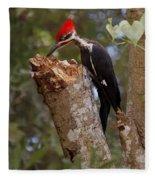 Foraging Pileated Woodpecker Fleece Blanket