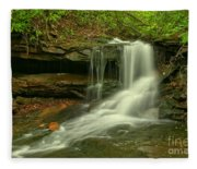 Forbes State Forest Cole Run Cave Falls Fleece Blanket