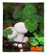 Forest Fairy Tale Fleece Blanket