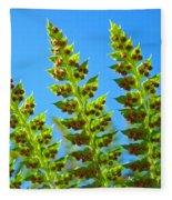 Forest Ferns Art Prints Blue Sky Botanical Baslee Troutman Fleece Blanket