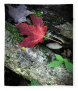Forest Floor In Autumn Fleece Blanket