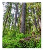 Forest Floor Of Hoh Rain Forest Fleece Blanket