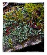 Forest Floral Delight Fleece Blanket