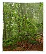 Forest Light 3 Fleece Blanket