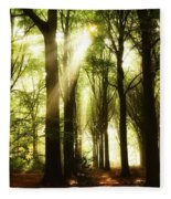 Forest Rays Fleece Blanket
