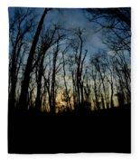 Forest Sunset Fleece Blanket