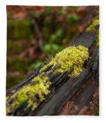 Forest Woods Fleece Blanket