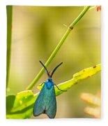 Forester Moth  Fleece Blanket