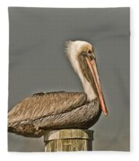 Fort Pierce Pelican Fleece Blanket
