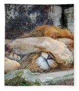 Fort Worth Zoo Sleepy Lion Fleece Blanket