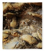 Fossil Shells Fleece Blanket