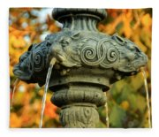 Fountain At Union Park Fleece Blanket
