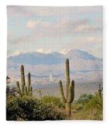 Fountain Hills Arizona Fleece Blanket