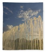 Fountain With Sunlight From The Side Fleece Blanket