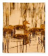 Four Baby Duckies Fleece Blanket