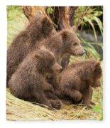 Four Bear Cubs Looking In Same Direction Fleece Blanket