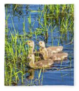 Four Goslings Fleece Blanket