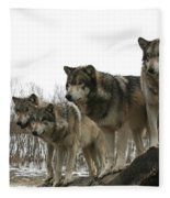 Four Pack Fleece Blanket