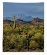 Four Peaks On The Horizon  Fleece Blanket