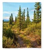 Four Wheeler Trail - Richardson Highway Fleece Blanket
