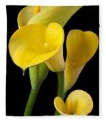 Four Yellow Calla Lilies Fleece Blanket