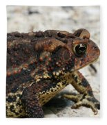 Fowler's Toad #2 Fleece Blanket