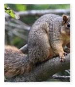 Fox Squirrel On A Branch - Southern Indiana Fleece Blanket
