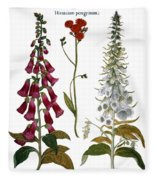 Foxglove And Hawkweed Fleece Blanket