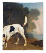 Foxhound On The Scent Fleece Blanket