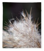 Fragile Seeds Fleece Blanket