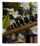Frangipani Tree And Caterpillar Fleece Blanket