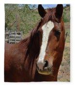 Freedom Horse Fleece Blanket