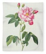 French Rose Fleece Blanket
