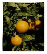 Fresh Oranges Fleece Blanket