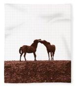 Friends-2 Fleece Blanket