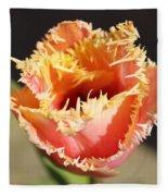 Fringed Tulip Fleece Blanket