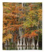 Frio River #5 2am-27571 Fleece Blanket