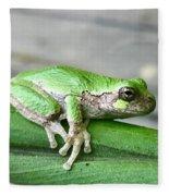 Frog Fleece Blanket