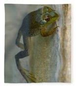 Frog Swim Fleece Blanket