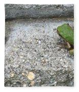 Froggie Fleece Blanket