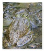 Frogs Eye View Fleece Blanket