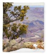 From Desert View Fleece Blanket
