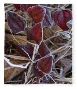 Frosted Red Green Briar Fleece Blanket