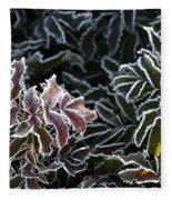 Frosted Tips Fleece Blanket
