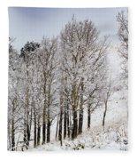 Frosty Aspen Trees Fleece Blanket