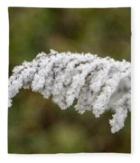 Frosty Frond Fleece Blanket