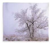 Frozen Ground Fleece Blanket