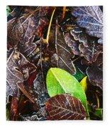 Frozen Oak Leaves, Glenveagh National Fleece Blanket